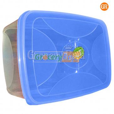 Plastic Box Storage Container 13 x 9 Inches No. 999