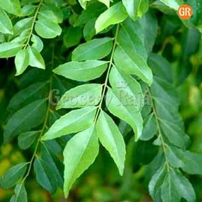 Curry Leaves (கறிவேப்பிலை) 100 gms